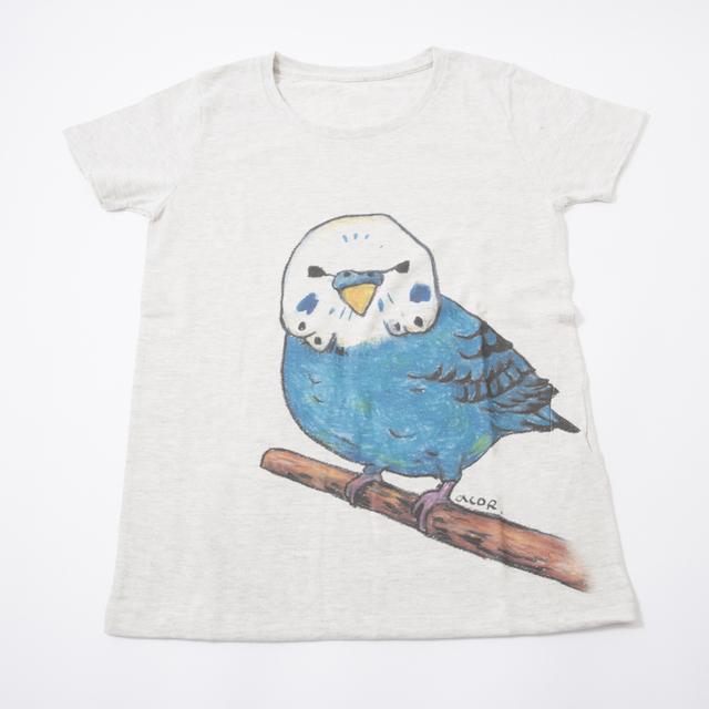 Tシャツ  セキセイ