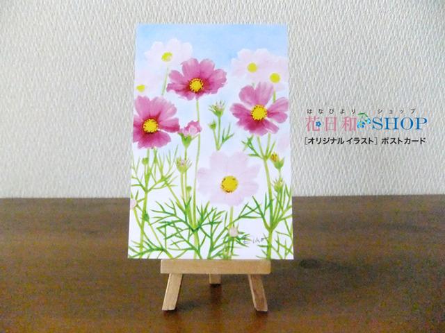 となみ夢の平◆コスモスウオッチング| ポストカード2枚セット