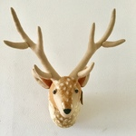 ANIMAL TROPHY Deer(M.size)