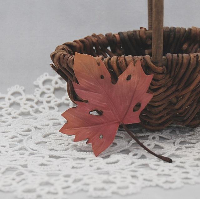 [��������]Autumn Leaf MA A