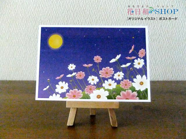月と秋桜| ポストカード2枚セット