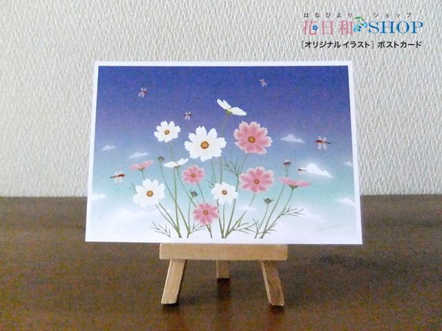 とんぼと秋桜| ポストカード2枚セット