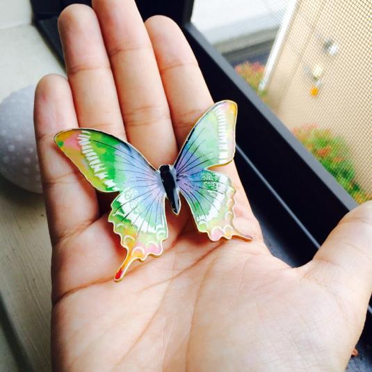 レインボーモルフォ 蝶々