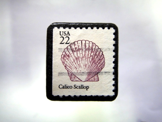 アメリカ 貝切手ブローチ995