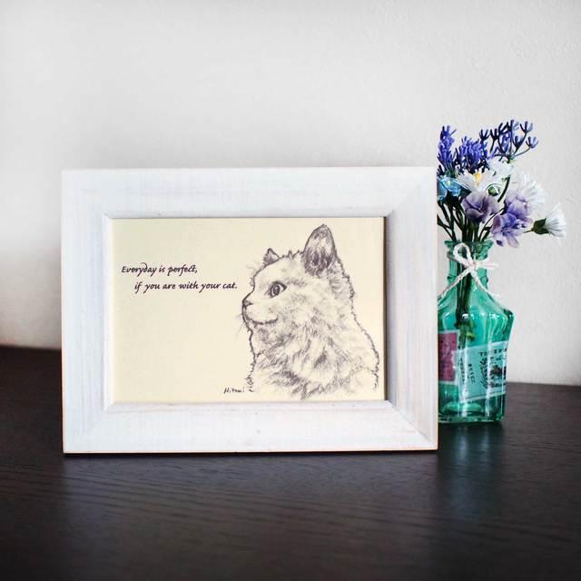 ポストカード 「猫と一緒なら、毎日が完璧。」同柄4枚