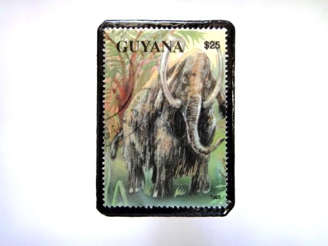 ギアナ 恐竜切手ブローチ 017