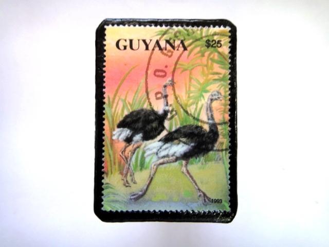 ギアナ 恐竜切手ブローチ 019