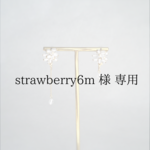 [strawberry6m様 専用] ice forest earrings- 2