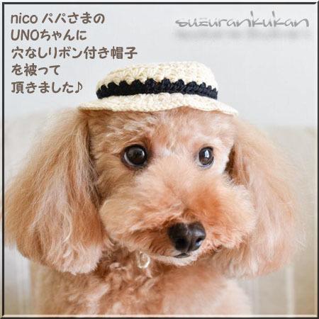 【犬用】頭周り25cm位リボン付き帽子010<コムギ>穴なし