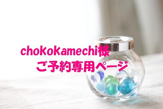 chokokamechi様ご予約専用ページ