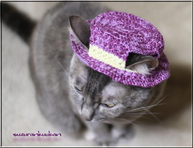 【猫用】編みカンカン帽2 561<グレープパープル>