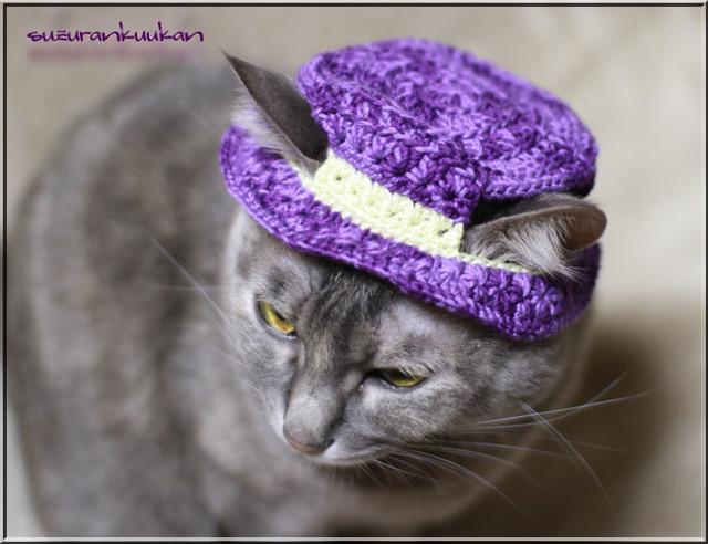【猫用】編みカンカン帽2 424<パンジーバイオレット>