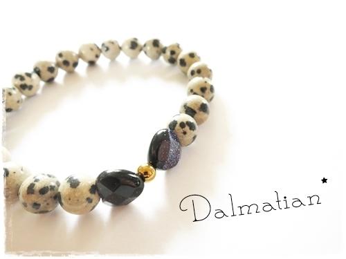 Dalmatian×BlueGoldStone*