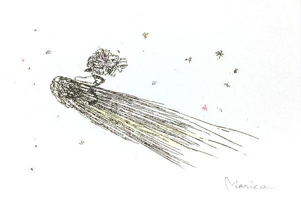 ciribiribin / 彗星