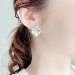 Mix stone *Clear / Pierce, Earrings