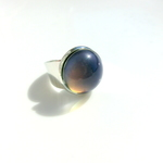 【特集掲載】color ring -silver-