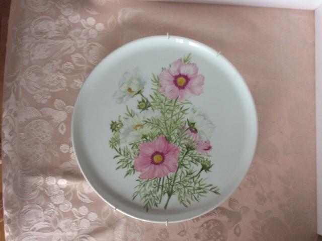 コスモスの絵皿