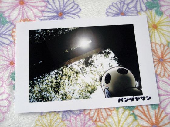 ポストカードセット『パンダヤサン(暑い日、鳥居/海辺/海の向こう/ラクガキ)』