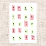 Flowers - pink & green -