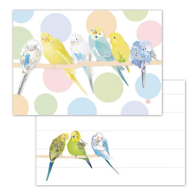 小鳥メモ帳 パステルカラーズ