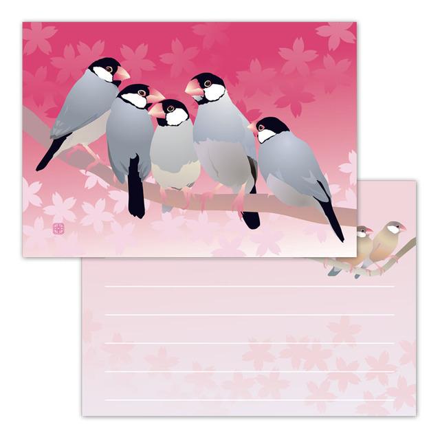 小鳥メモ帳 春文鳥