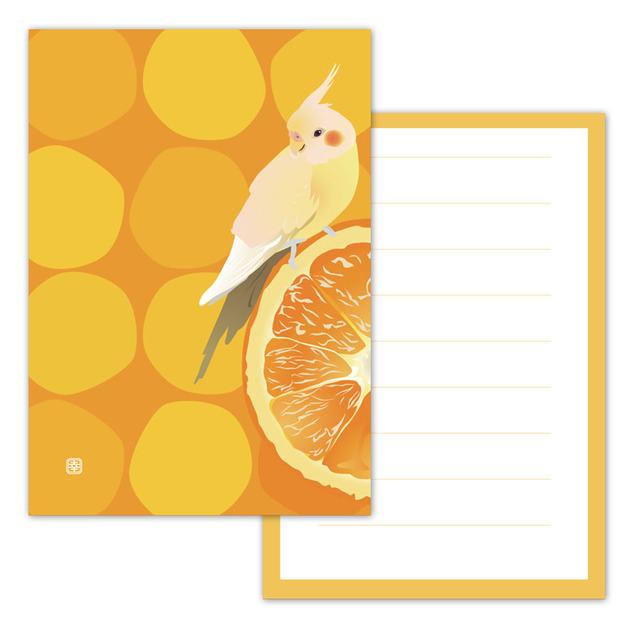 小鳥メモ帳 オレンジオカメ