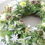 送料無料*BotanicalGreenWreath35