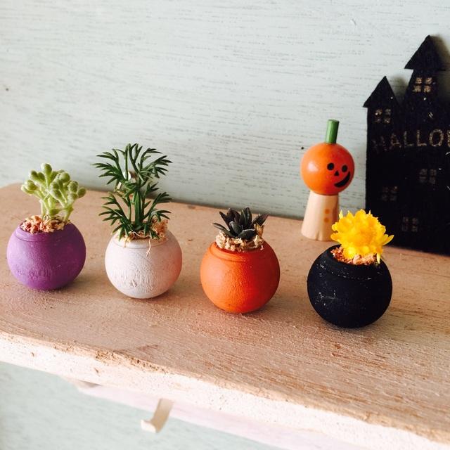 コロコロ植木鉢 ハロウィンカラー