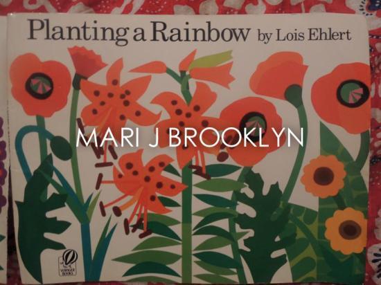 MJBK アート ビンテ−ジブック リメイク Planting a Rainbow