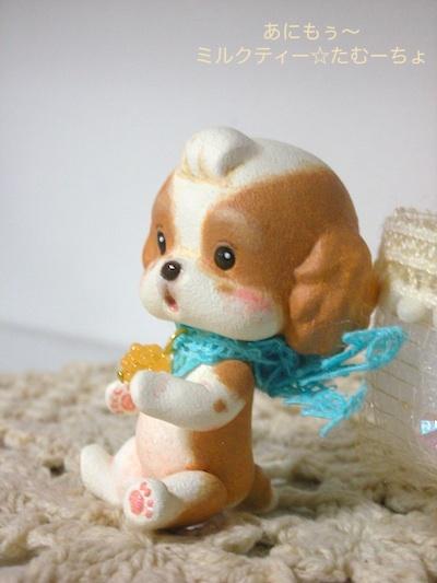 あにもぅ〜 ミルクティー☆たむーちょ