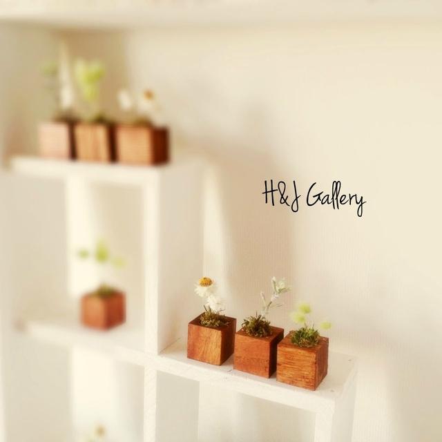 ☆小さな小さなちーさな植木鉢カントリー*角