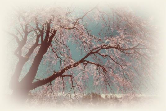 和紙アートフォト【しだれ桜と残雪の山】