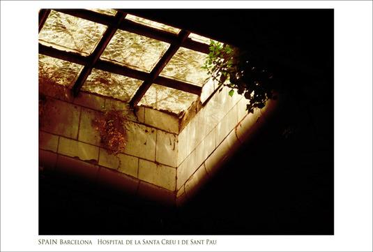 SPAIN PHOTOS【15】