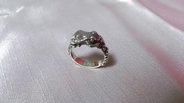 蛙のリング