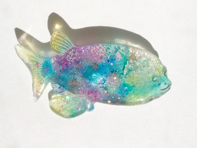 透明深海魚デメニギス