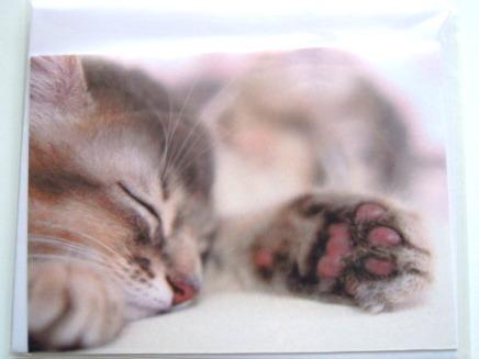 おやすみねこのミニカード