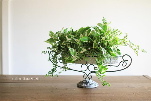 観葉植物寄せ植えギャザリング-アイアンクレセントスタンドー