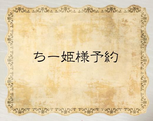 【ちー姫様ご予約品】