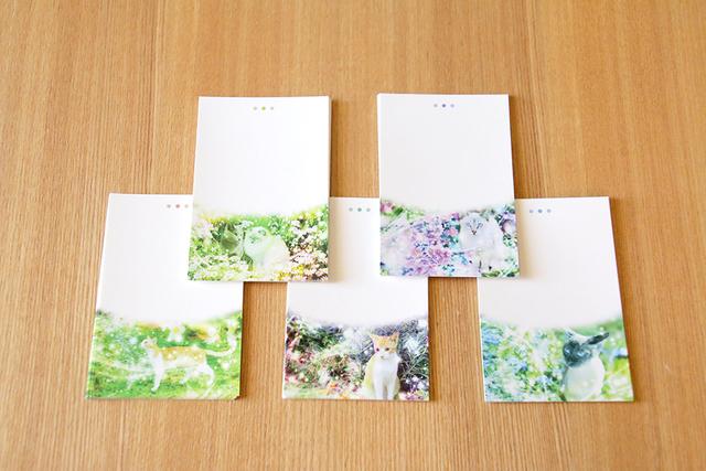メモ用紙【猫柄】50枚(5種類?各10枚...