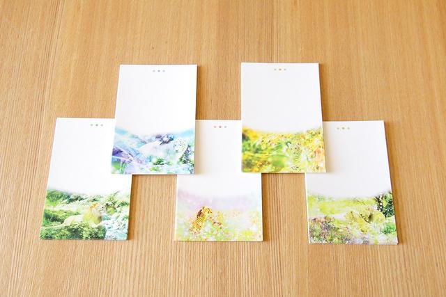 メモ用紙【猫科の動物柄】50枚(5種類?...