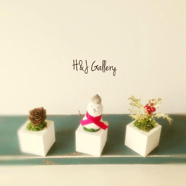 ☆小さな小さなちーさな植木鉢*どんぐり帽子