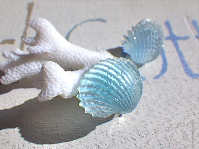 貝殻のイヤリング