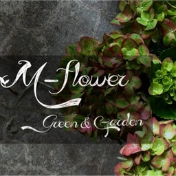 mflower-shop
