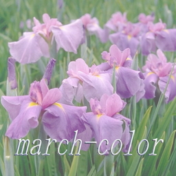 march-color