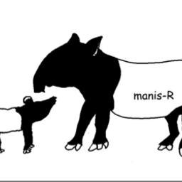 Manis Rさんのプロフィール ハンドメイドマーケット Minne