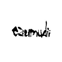 Caumudiiさんのプロフィール ハンドメイドマーケット Minne