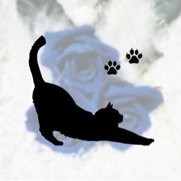 Cat Paw さんのプロフィール ハンドメイドマーケット Minne