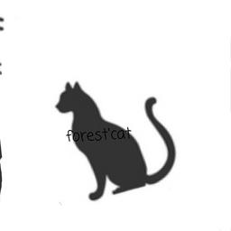 Forest Catさんの感想 コメント ハンドメイドマーケット Minne