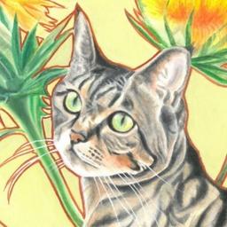 猫じゃらしさんのプロフィール ハンドメイドマーケット Minne